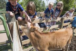 Family Fun at Lee Martinez Park Farm