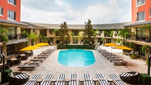 ZaZa Hotel - Poolside