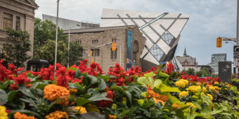 Flowers blooming in front of the Royal Ontario Museum in Toronto