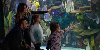 A family at Ripley's Aquarium of Canada