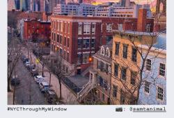 NYCgo Post 2 #ThroughMyWindow