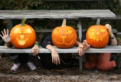 New York Botanical Garden Spooky Pumpkin Garden