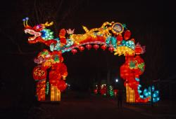 NYC Winter Lantern Festival - Credit NYC Winter Lantern Festival.jpg