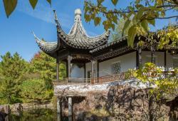 Snug Harbor Chinese Scholars Garden