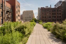 High Line (Photo: Brittany Petronella)