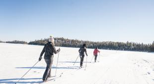 Cross-country skiing at Falcon Trails
