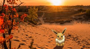 Pokémon Eevee in the Spirit Sands of Spruce Woods Provincial Park