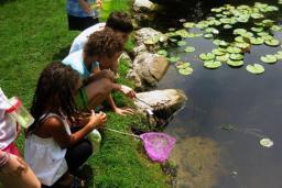 Blithewold pond