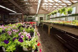 Daggett Farm Greenhouse
