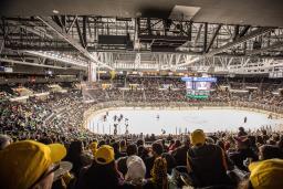 Providence Bruins Hockey