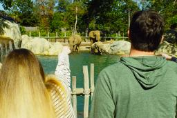 Roger Williams Park Zoo Header