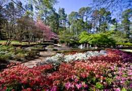 8 Fun Facts About Rock Hill's Glencairn Garden