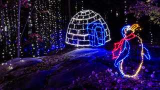 Chattanooga S New Holiday Trail Of Lights