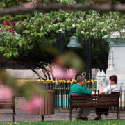 Couple sitting on park bench at Franklin Square Syracuse