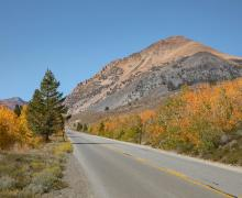 Lower Virginia Lakes Road