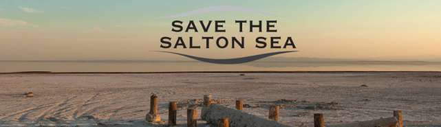Save the Salton Sea