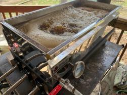 McGregor Sugar Farming