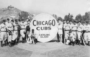 Chicago Cubs Catalina
