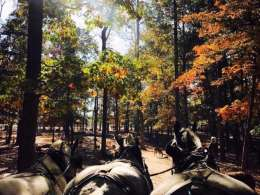 10 Rowan County Events to Pencil in this October