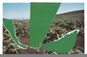 Ellsworth Kelly Postcards