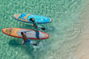 Paddleboarders