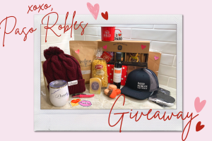 V Day Instagram Giveaway