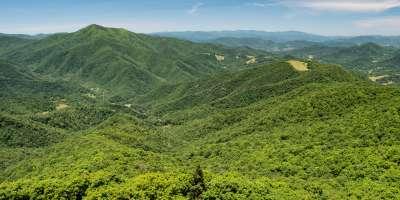 Frying Pan Mountain Lookout Tower Hike