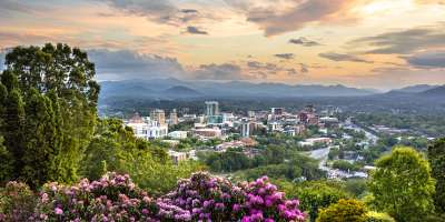 Asheville, NC skyline with beautiful rhododendron blooms