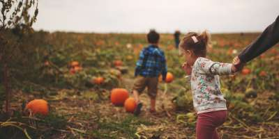 Little boy and girl holding her parent's hand in a Southern Indiana pumpkin patch