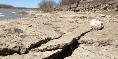 Cracks and crevices in the ground at Falls of the Ohio State Park