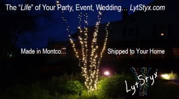 LytStyx Member renewal ad