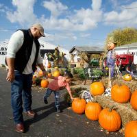 Media Page Gallery Square Joe Huber's Pumpkin