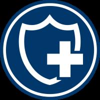 Safety Logo Icon