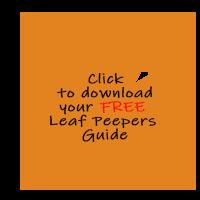 Leaf-Download