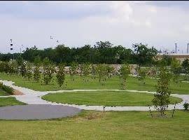 Crape Myrtle World Collection Park