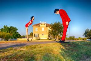 """Ostriches"" at the Peace River Botanical & Sculpture Gardens in Punta Gorda, Fla."