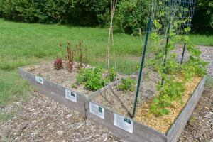 Claysburg Community Garden