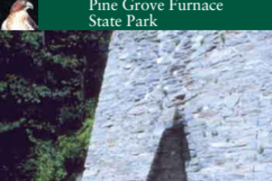 Pine Grove Recreational Guide