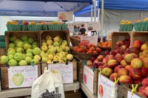 Farmers Markets in the Cumberland Valley