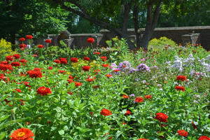 Ninth Annual Garden & Landscape Symposium