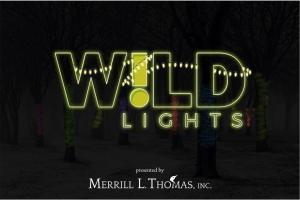 Wild Lights logo