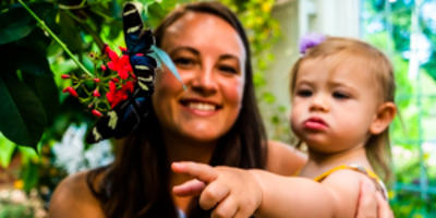Hershey Gardens Family Fun Adventure Trail