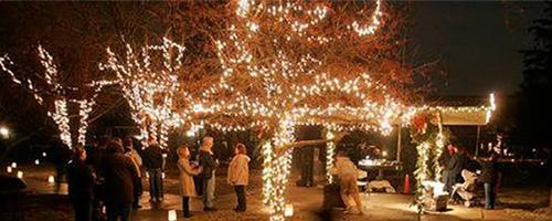 oakwood lights