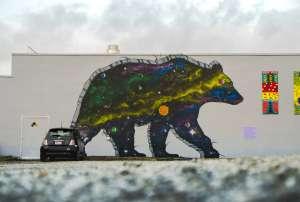 Laurel Space Bears Photo