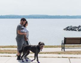1. Newtown Dream Dog Park - Johns Creek, Georgia