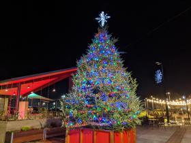 Downtown Christmas Tree Lighting