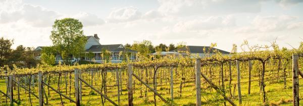 Mackinaw Winery
