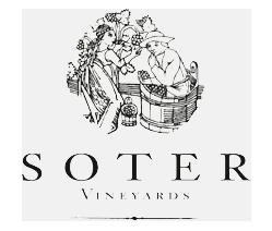 Soter-logo