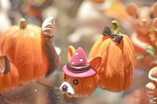 Animals shaped ceramics made from the shapes of pumpkins at Derby Dinner Giftshop