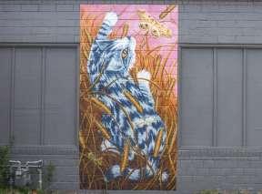 Pounce Mural